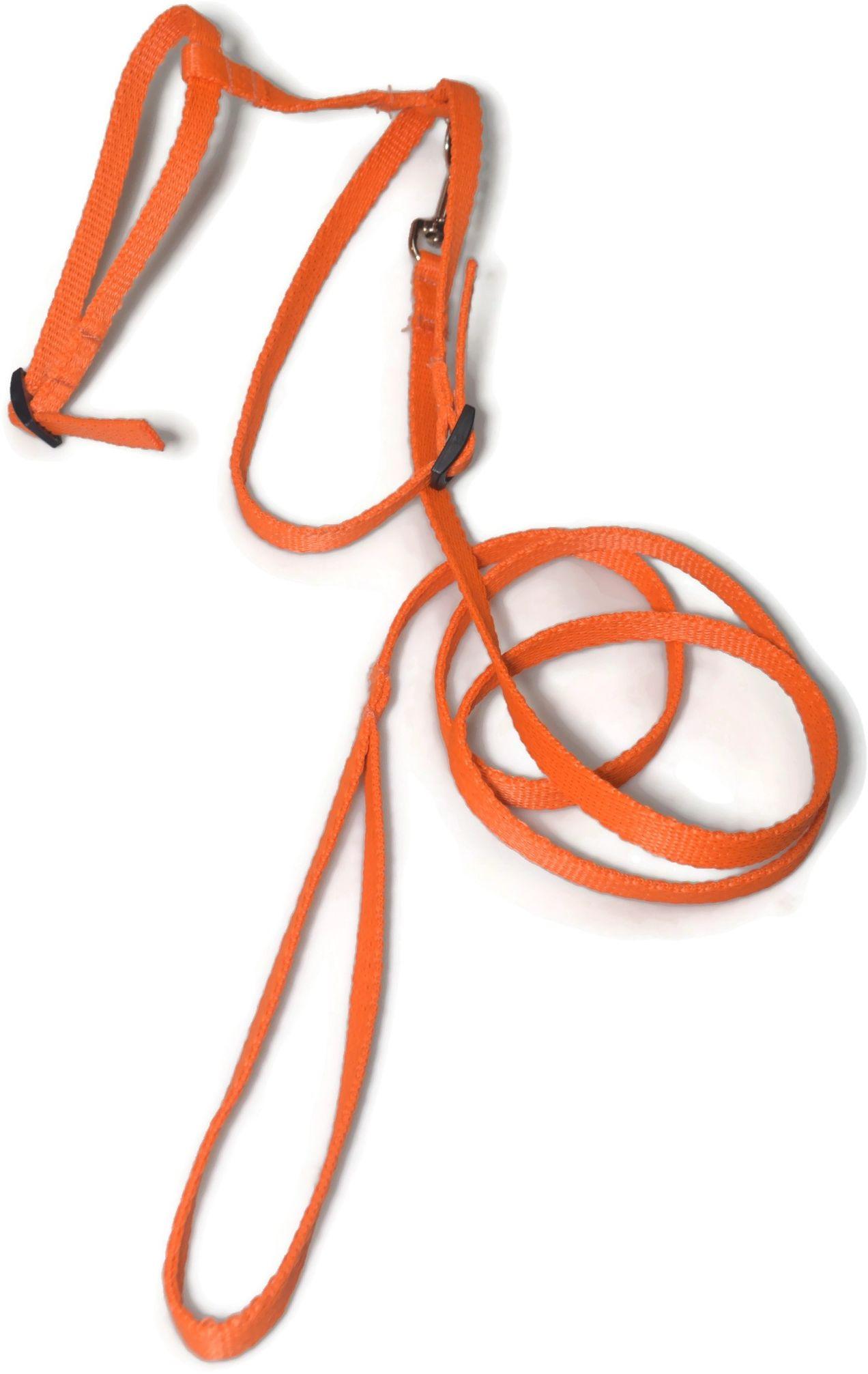 A-059 KOMPLET DLA KOTA V.2 : Kolor - Pomarańczowy - ALIZOO
