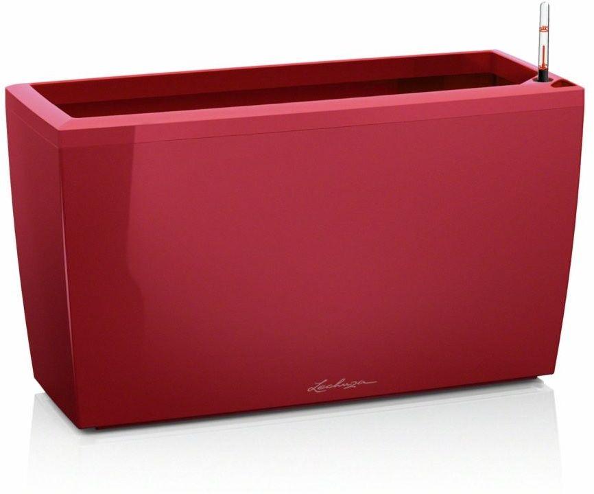 Donica lechuza cararo - scarlet red, połysk - czerwony