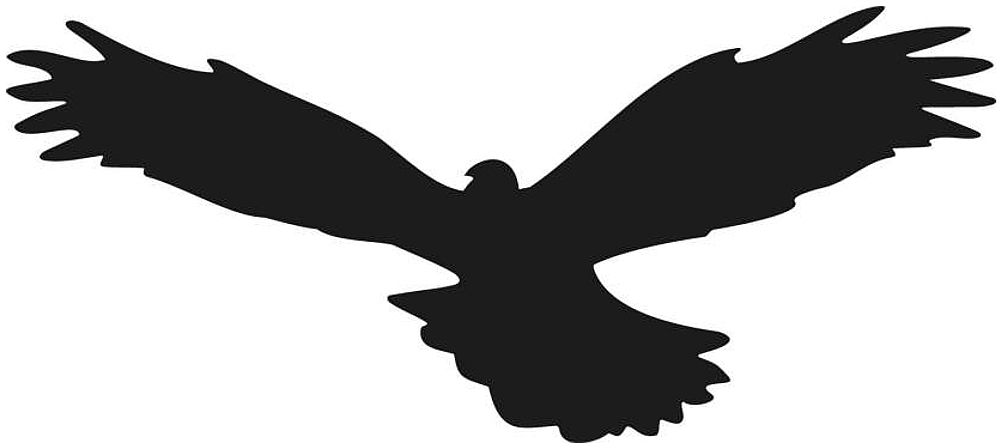 Naklejki na szyby, ptak drapieżny wzór 01. Naklejka odstraszacz.