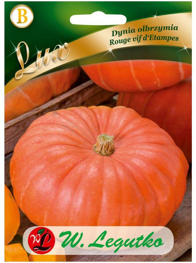 Dynia olbrzymia ROUGE VIF D''ETAMPES nasiona tradycyjne 3 g W. LEGUTKO