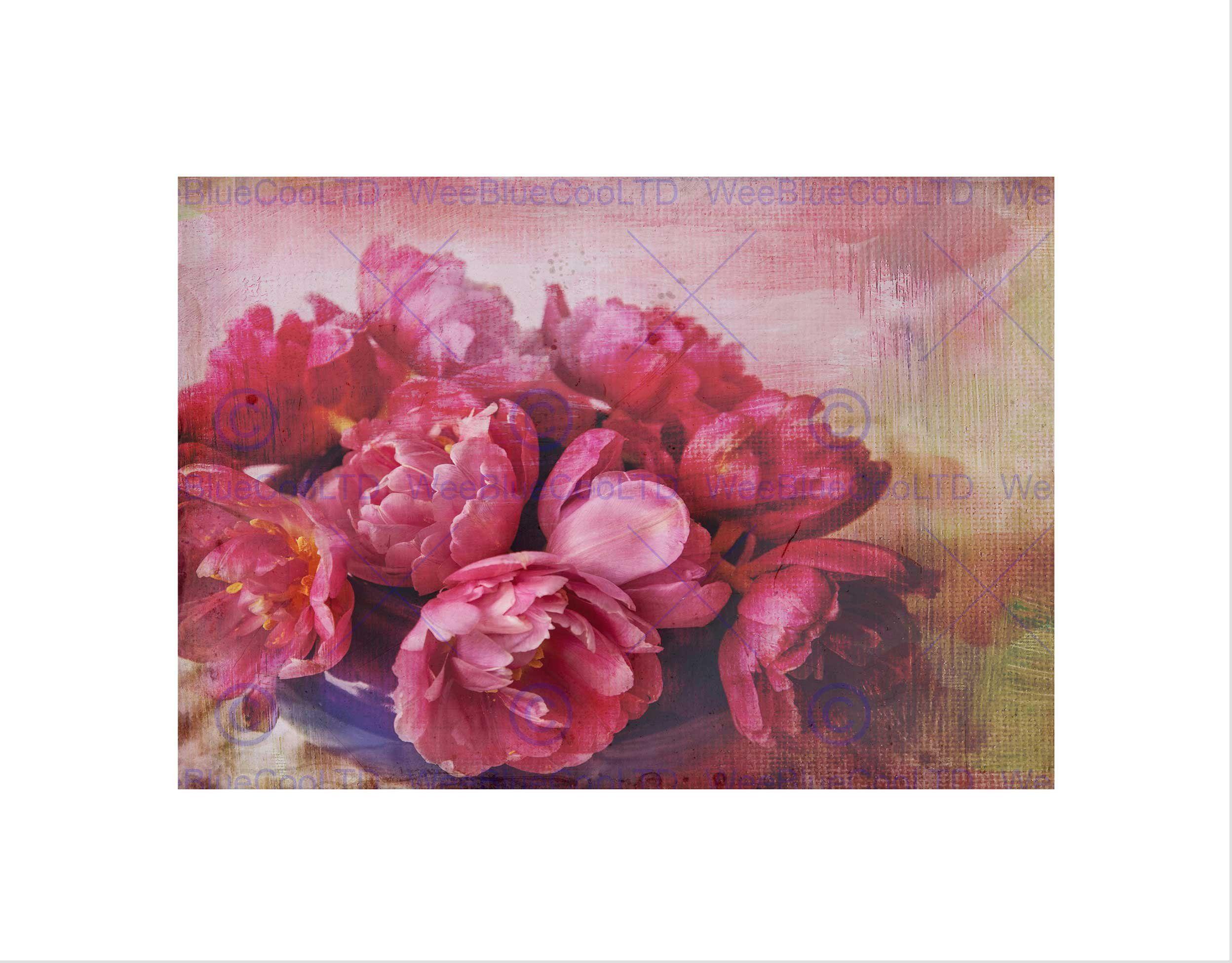 Wee Blue Coo Tulipany różowy bukiet kwiaty grunge sztuka obraz sztuka ścienna druk