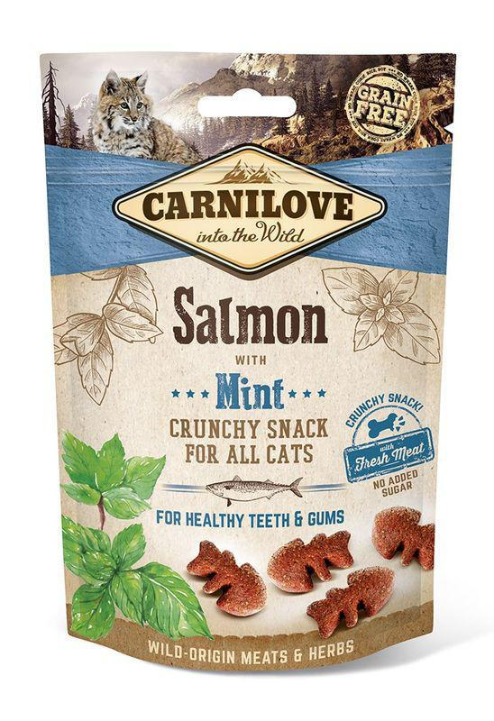 CARNILOVE cat SALMON/mint