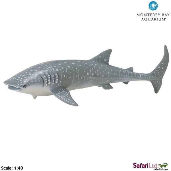 Safari Ltd 210602 Rekin wielorybi 1:40 24x8,5cm MONTEREY B