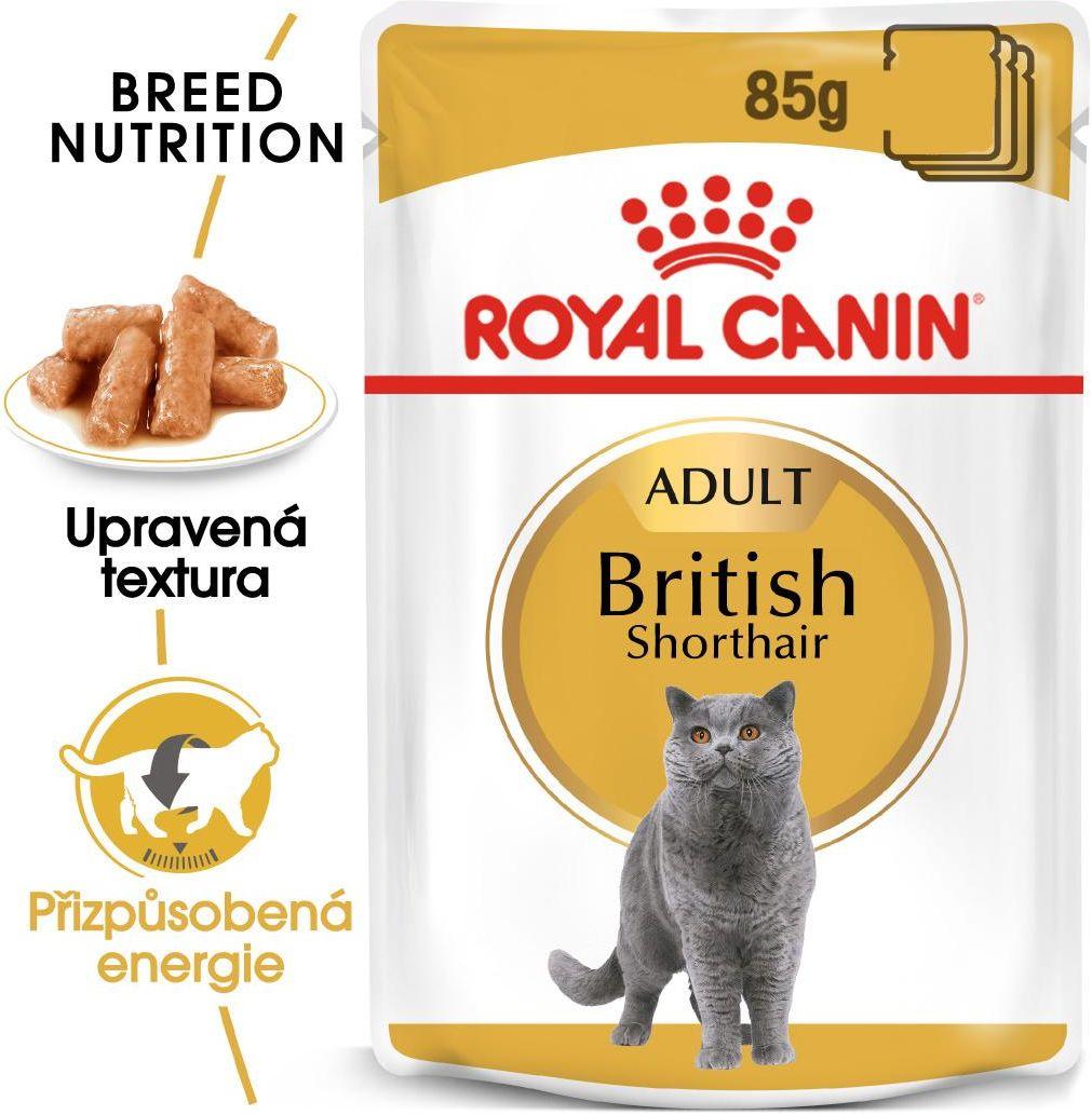 Royal Canin British Shorthair Gravy - kieszeń dla brytyjskich kotów krótkowłosych w soku