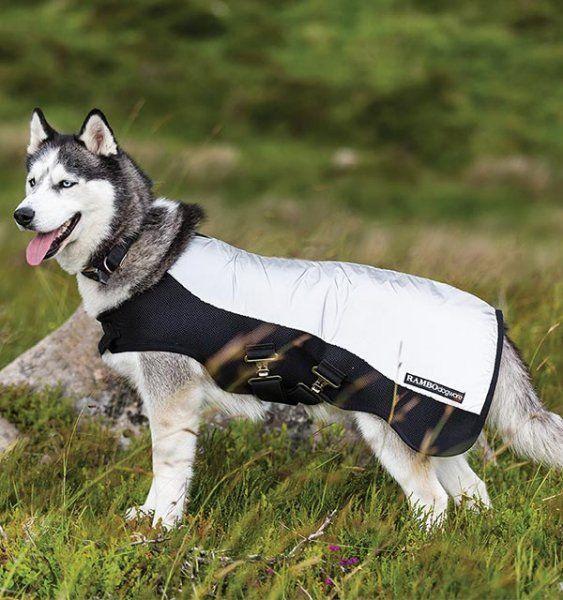 Derka dla psa RAMBO SPORT odblaskowa - HORSEWARE