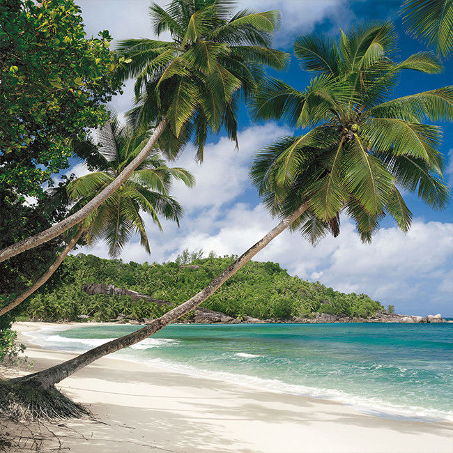 Fototapeta papierowa Seychellen 368 x 254 cm
