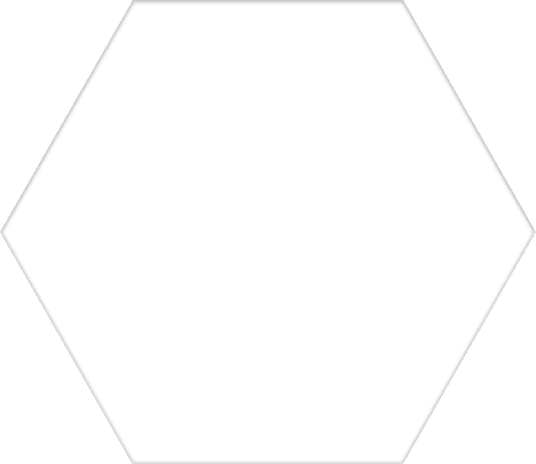 Hex 25 Basic White 22x25 Płytki heksagonalne