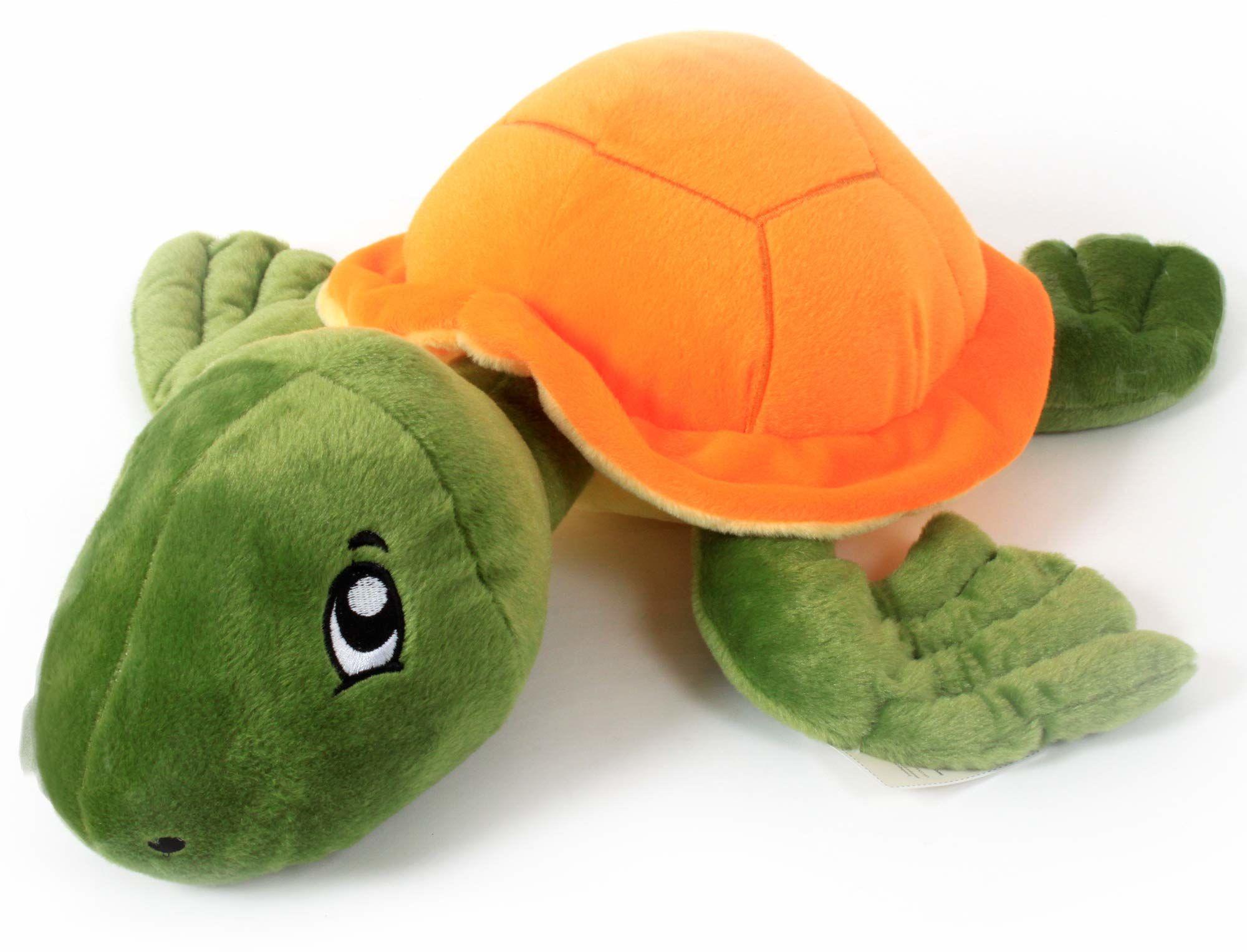 MGM 205558 żółw mm 34 cm, Oda narodzin