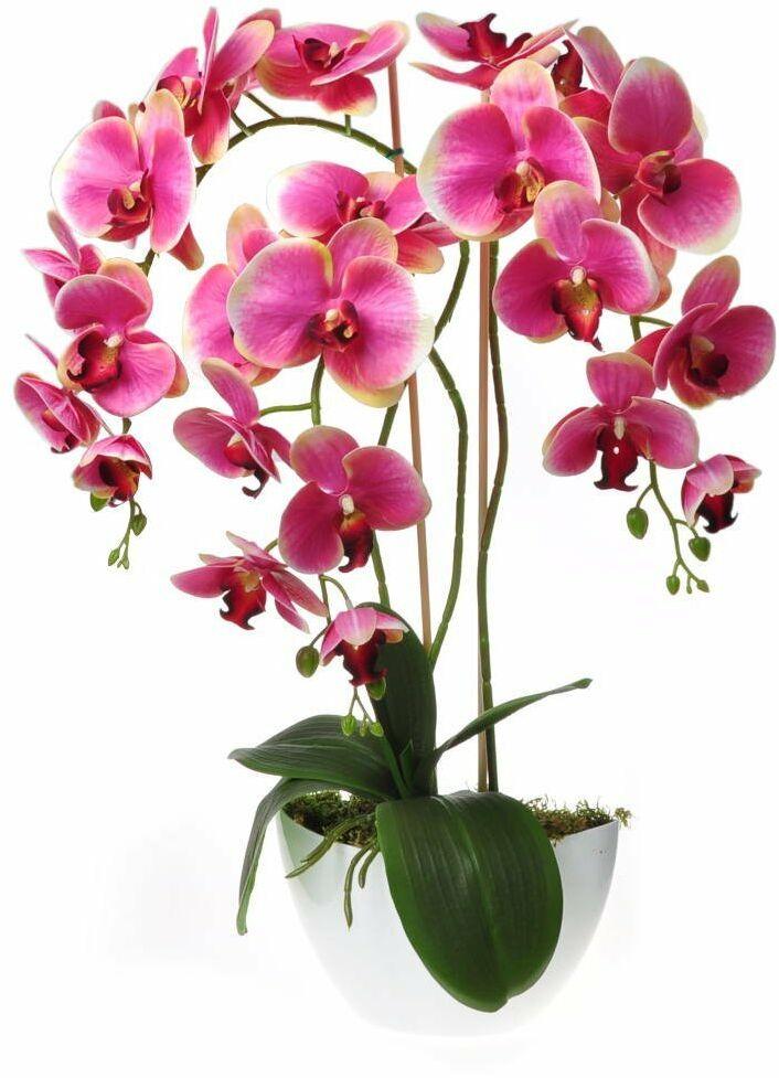Pantofelek24.pl Sztuczny storczyk orchidea- kompozycja kwiatowa 60 cm