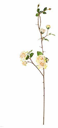 EUROCINSA 57995C02 gałązka róży kość słoniowa z różą, pudełko 6 sztuk, 125 cm