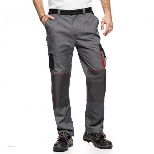 Spodnie do pasa AVACORE LENNOX szaro czarne z czerwonymi elementami