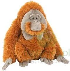 Orangutan - Wild Republic - maskotka pluszowa