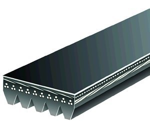 Pasek wielorowkowy 5050520