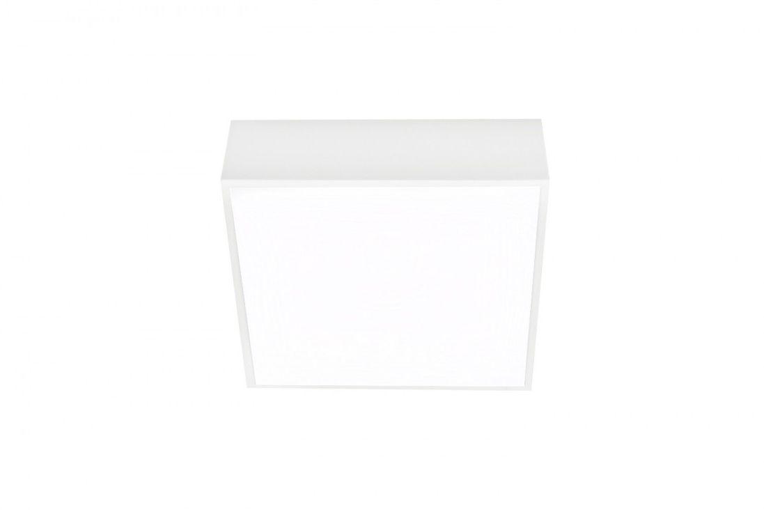 Oprawa sufitowa FALCO 12 AZ2780 - Azzardo - Sprawdź kupon rabatowy w koszyku