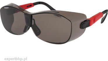 Okulary ochronne SAMPREYS SA 220-GN przyciemniane