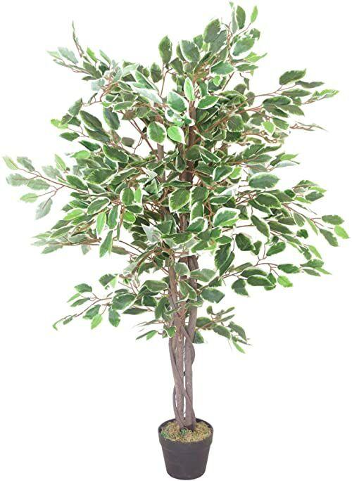 Leaf LEAF-7021 sztuczne drzewo Ficus, biała krawędź skrętu, 130 cm