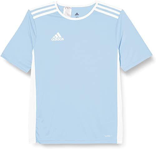 adidas Męski T-shirt Entrada 18 Jsy niebieski przezroczysty/biały 3XL