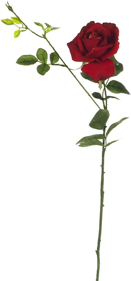 Express Flor Pudełko z 12 sztucznymi różami, jedwabne róże, 70 cm, czerwone