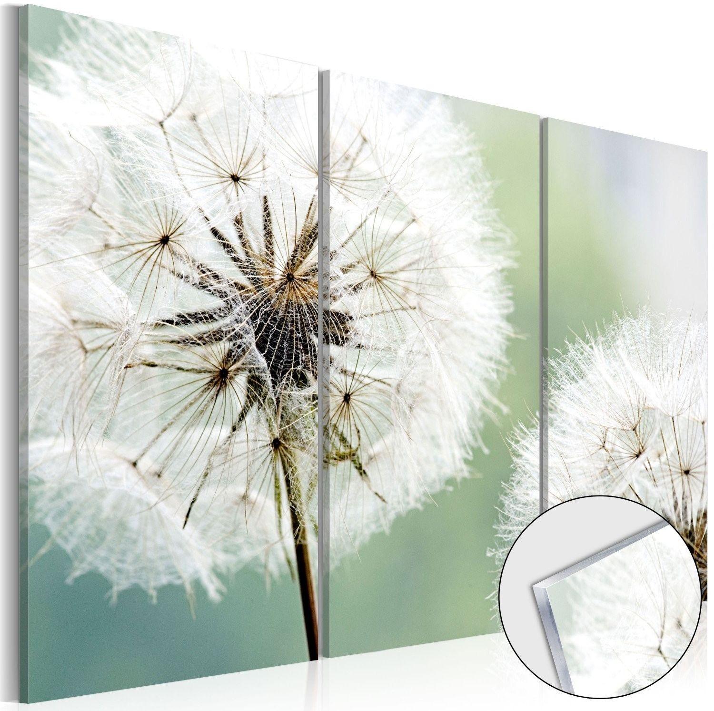 Obraz na szkle akrylowym - puszyste dmuchawce [glass]