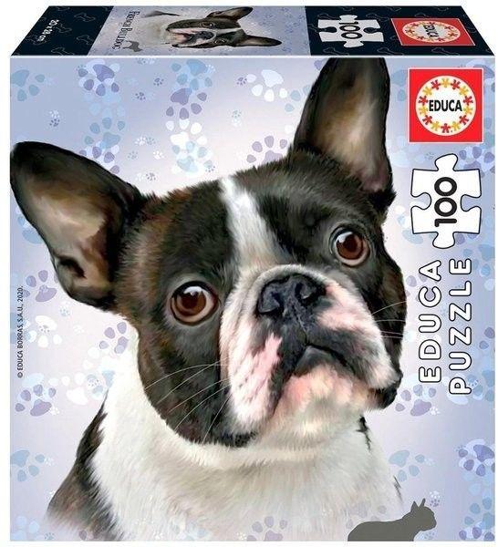 Puzzle Educa 100 - Francuski Buldog, French Bulldog