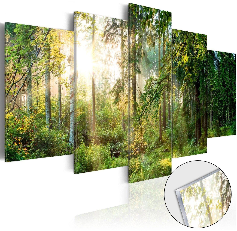 Obraz na szkle akrylowym - zielony azyl [glass]