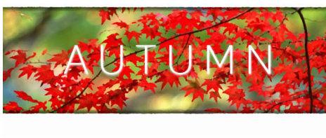 Autumn (PC/MAC/LX) klucz Steam