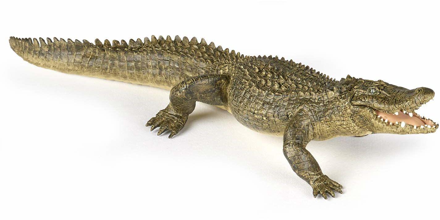 Papo 50254 50254-aligator aligator, wiele kolorów