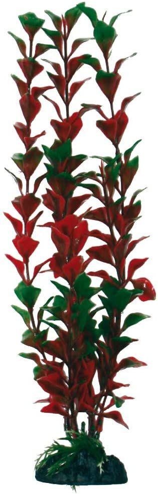 WAVE Ludwigia Palustris roślina klasyczna, duża
