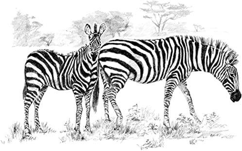 Royal Brush Łatwy do szkicowania duży zestaw 40 x 30 cm, zebry
