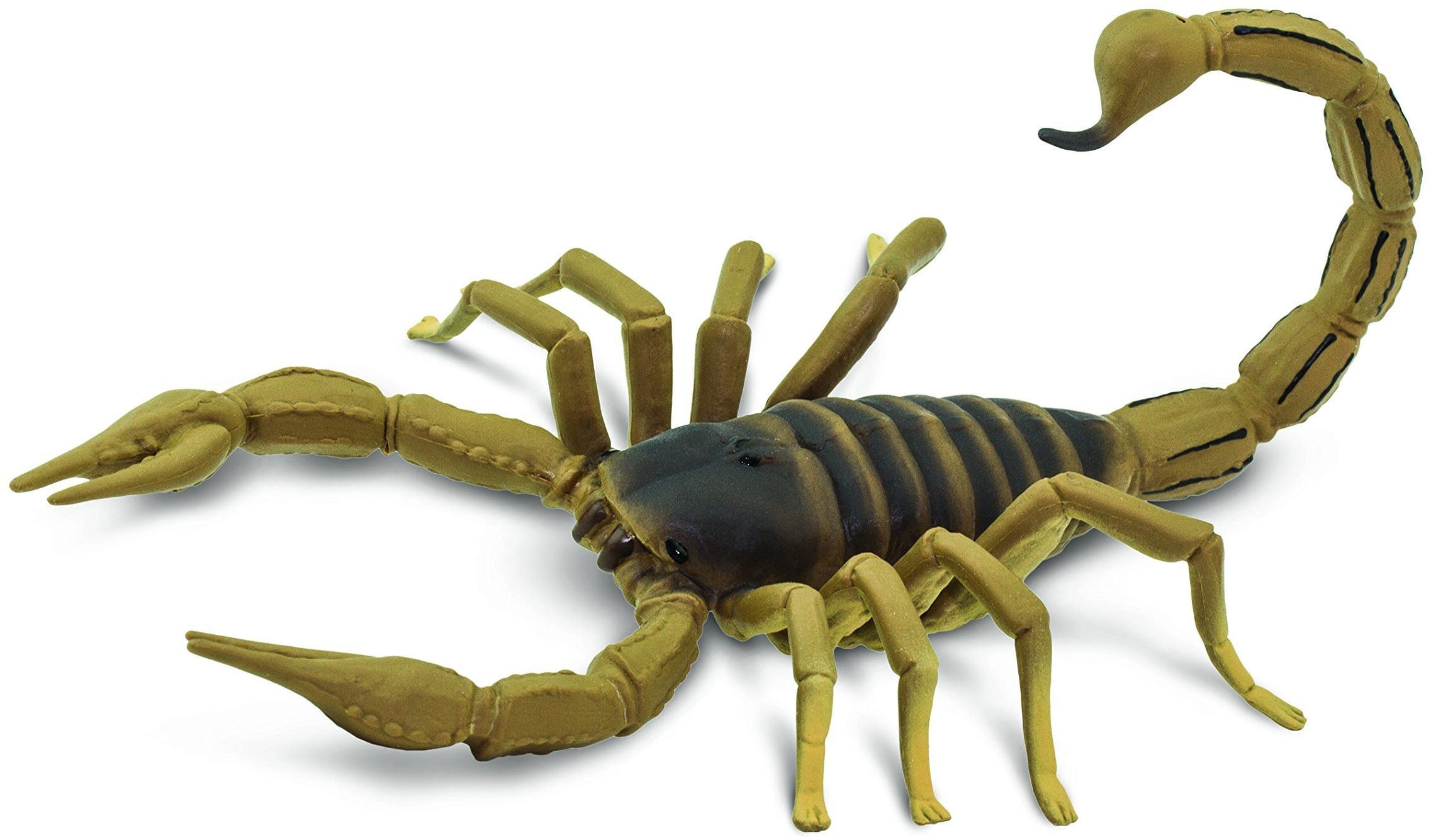 Safari 100260 niesamowite stworzenia skorpion miniaturowy