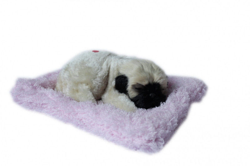 Piesek śpiący na poduszce - Mops