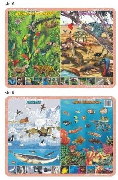 Podkładka edu. 033 - Zwierzęta Amazonii..