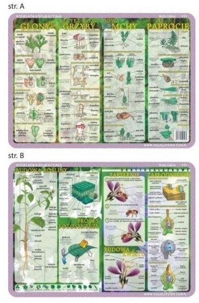 Podkładka edu. 026 - Glony, grzyby, mchy...
