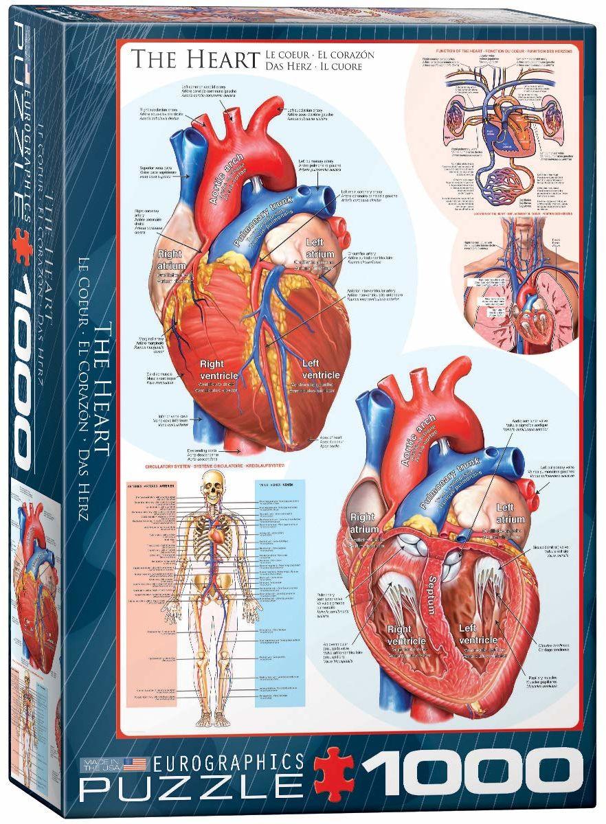 Eurographics EG60000257 puzzle w kształcie serca (1000 sztuk)
