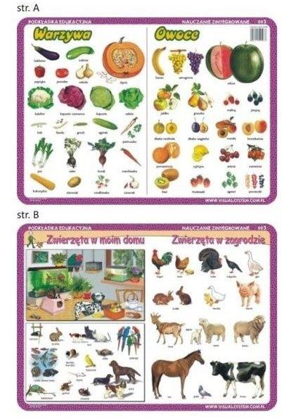Podkładka edu. 003 - Warzywa, owoce, zwierzęta