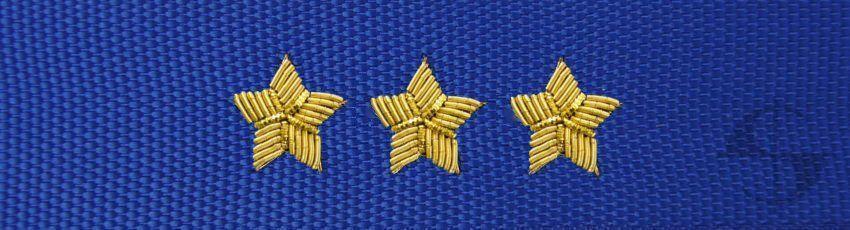 Otok do czapki garnizonowej PSP - aspirant sztabowy / kapitan / starszy brygadier - haft bajorkiem (MIL2139) SR