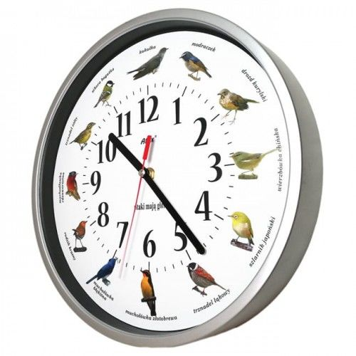 Zegar z głosami ptaków #1 plastik srebrny