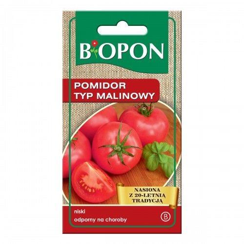 Pomidor Malinowy- nasiona