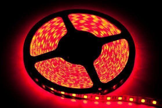 TAŚMA 60 LED 24W. Barwa Czerwony. IP20. (5 metrów)