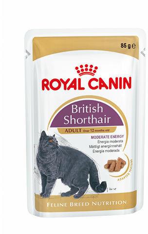 ROYAL CANIN British Shorthair Adult saszetka 12x85g (Sos) karma mokra w sosie dla kotów dorosłych rasy brytyjski krótkowłosy