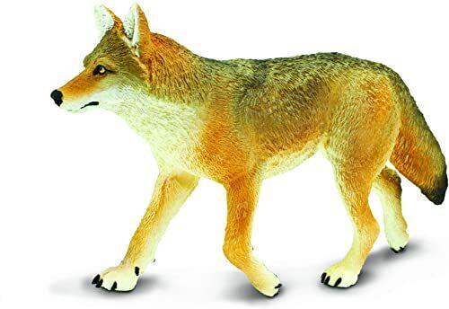 Safari 113089 Coyote
