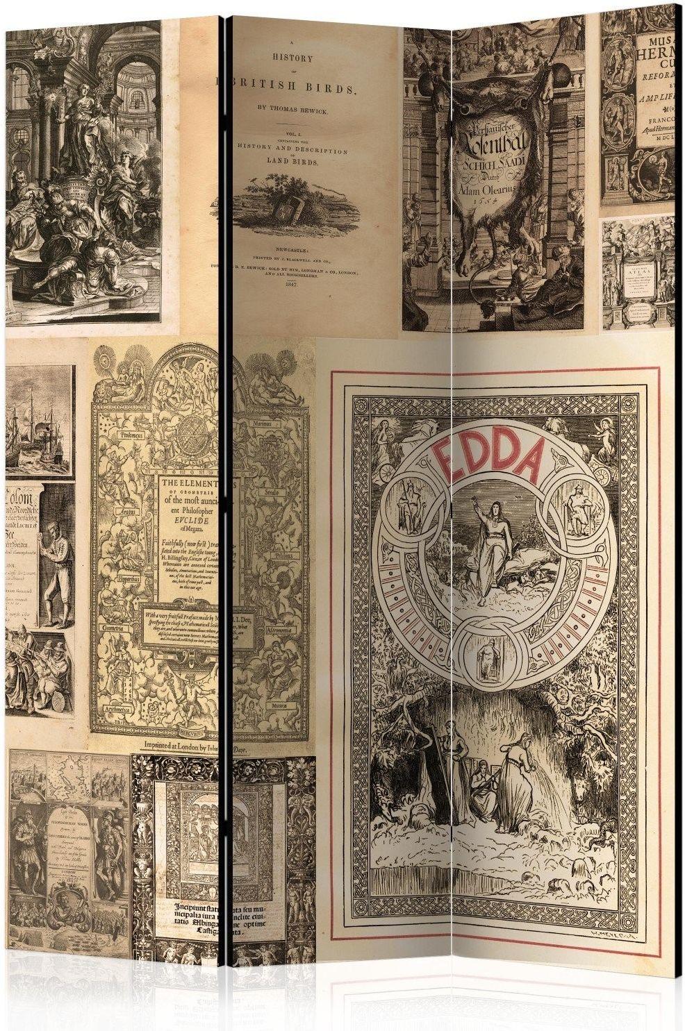 Parawan 3-częściowy - vintage books [room dividers]