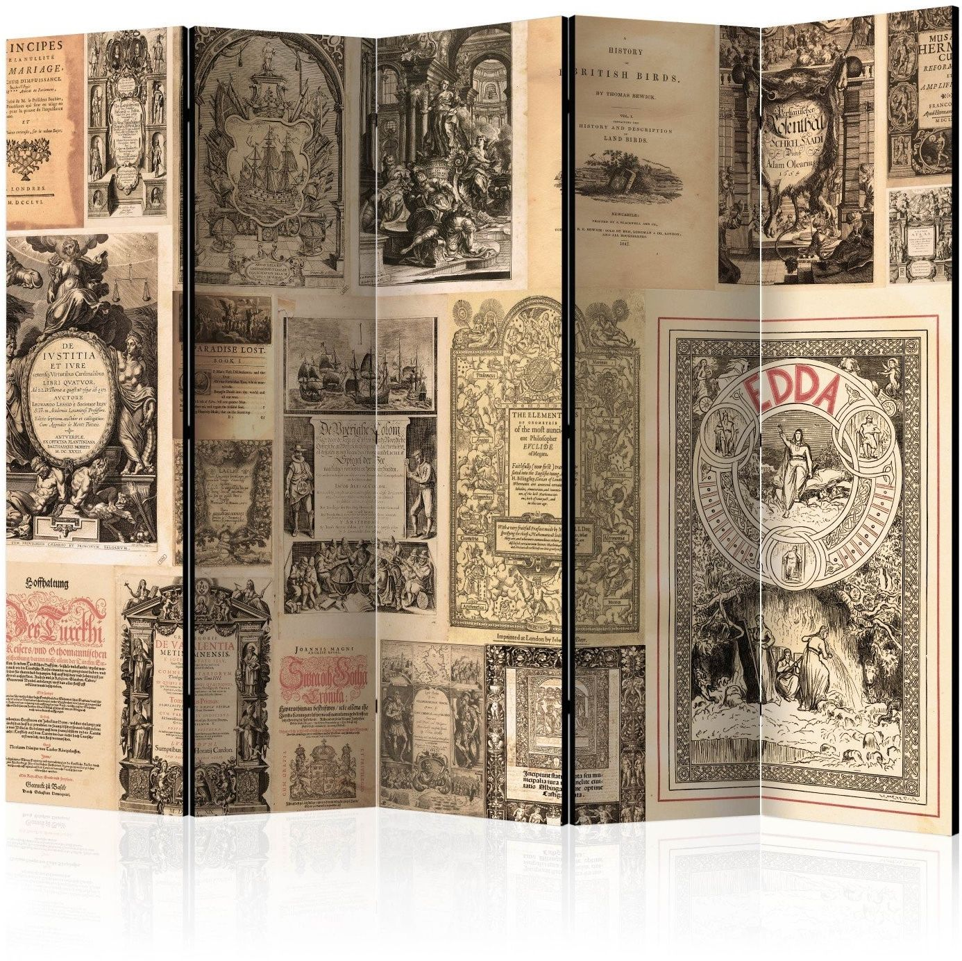 Parawan 5-częściowy - vintage books ii [room dividers]
