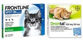 Pakiet Frontline Spot On dla Kotów + Drontal dla Kotów 2 Tabletki