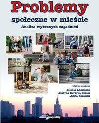 Problemy społeczne w mieście - (red.) Jolanta Łodzińska, Justyna Kurtyka-Chałas, Agata Rozalska