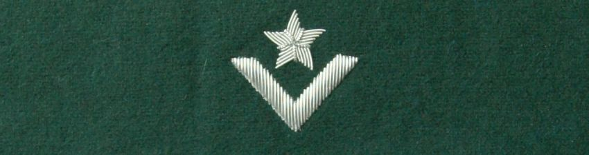 Otok zielony do rogatywki Wojska Polskiego - młodszy chorąży (MIL873) SR
