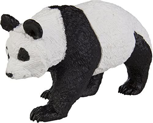Dzika przyroda panda