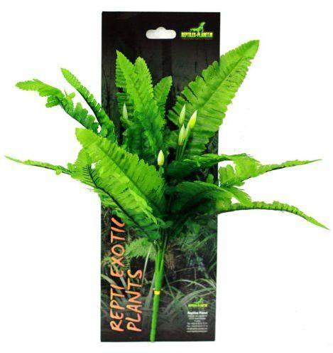 Reptiles Planet Sztuczna roślina do terrarium Tropical Repti egzotyczna roślina nephnolepis cordifoolia Presle