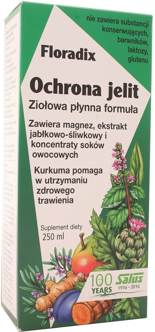 Floradix Ochrona jelit - Salus-Haus - 250ml