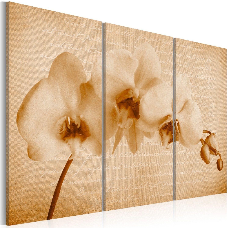 Obraz - orchidea (vintage)